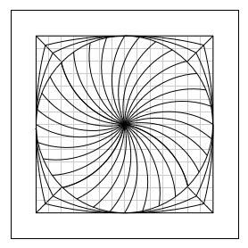 Spiral Coaster